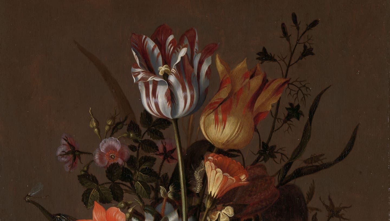 Tulpen aus Amsterdam: Im Rijksmuseum gibt es eine reiche malerische Tulpenernte. Dieser Prachtstrauss von Jacob Marrel, der Hunderte von Tulpen gezeichnet und gemalt hat, stammt von 1634 und ist 40,3 mal 31 Zentimeter klein. (Rijksmuseum Amsterdam)