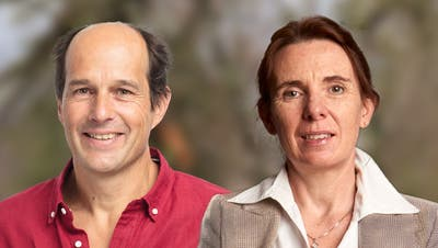 Gesamterneuerungswahlen: Nach den Grünliberalen kommen die Grünen