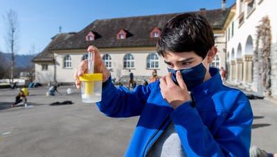 Schülerinnen und Schüler der Sekundarschule Meggen führen auf dem Pausenplatz das Testprozedere durch. (Eveline Beerkircher (Meggen, 30. März 2021))