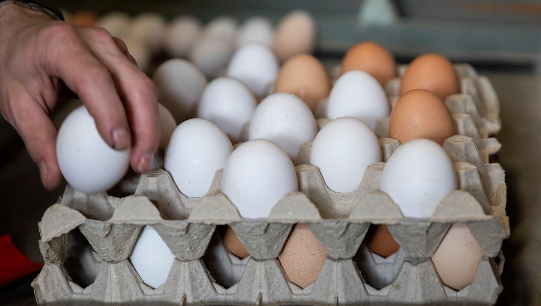 Parat für dieEiertütschete: An Ostern sind weisse Eier besonders beliebt. (Severin Bigler)