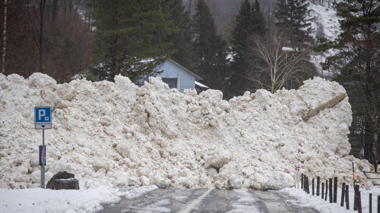 Zum Beispiel zwischen Seedorf und Bauen verschüttete Anfang Jahr eine Lawine auch in tiefen Lagen eine Kantonsstrasse. (Keystone)