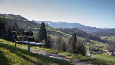 Im Kanton Zug ist finanziell alles eitel Sonnenschein – so wie hier in Edlibach mit Blick in Richtung Lorzentobel. (Bild: Matthias Jurt (31. März 2021))