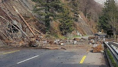 Der Steinschlag verschüttete die Strasse zwischen Gersau und Brunnen. (Leserbild: Bote der Urschweiz)