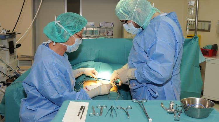 Insgesamt 5512 Behandlungen sind im Jahr 2020 durchgeführt worden. (Bild: zvg)