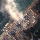 Am 11. März 2011 kommt es nach dem Erdbeben und dem Tsunami zu einer Kernschmelze mit nachfolgender Explosion im Kernkraftwerk Fukushima-Daiichi. (Bild: Getty (14. März 2011))