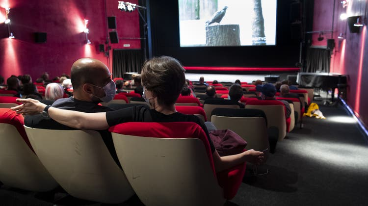 Die Kinos sind zurzeit im zweiten Lockdown und schreiben hohe Verluste. Dieser Saal in Pully bei Lausanne empfing im Juni 2020 Publikum. (Laurent Gillieron / KEYSTONE)
