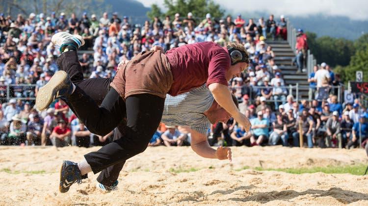 Eindrücke vom Nordwestschweizerischen Schwingfest 2014 inZuchwil. (Bild: Thomas Ulrich Und Tina Dauwalder / SZ)