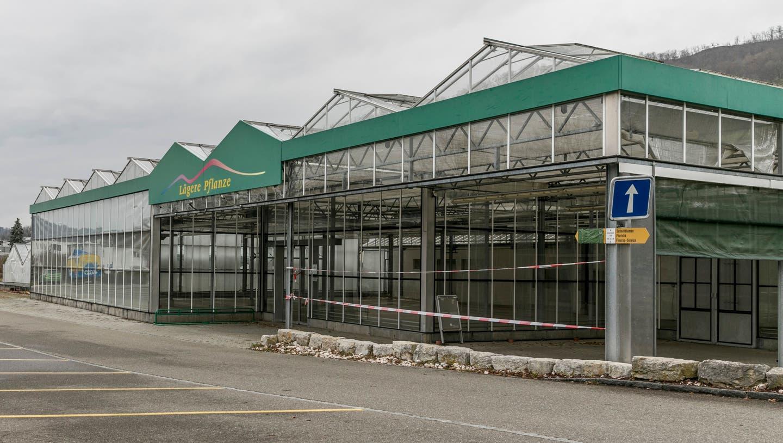 Die Gewächshäuser neben dem Blumenladen sollen im Mai oder Juni abgerissen werden. (Sandra Ardizzone (5. März 2021))