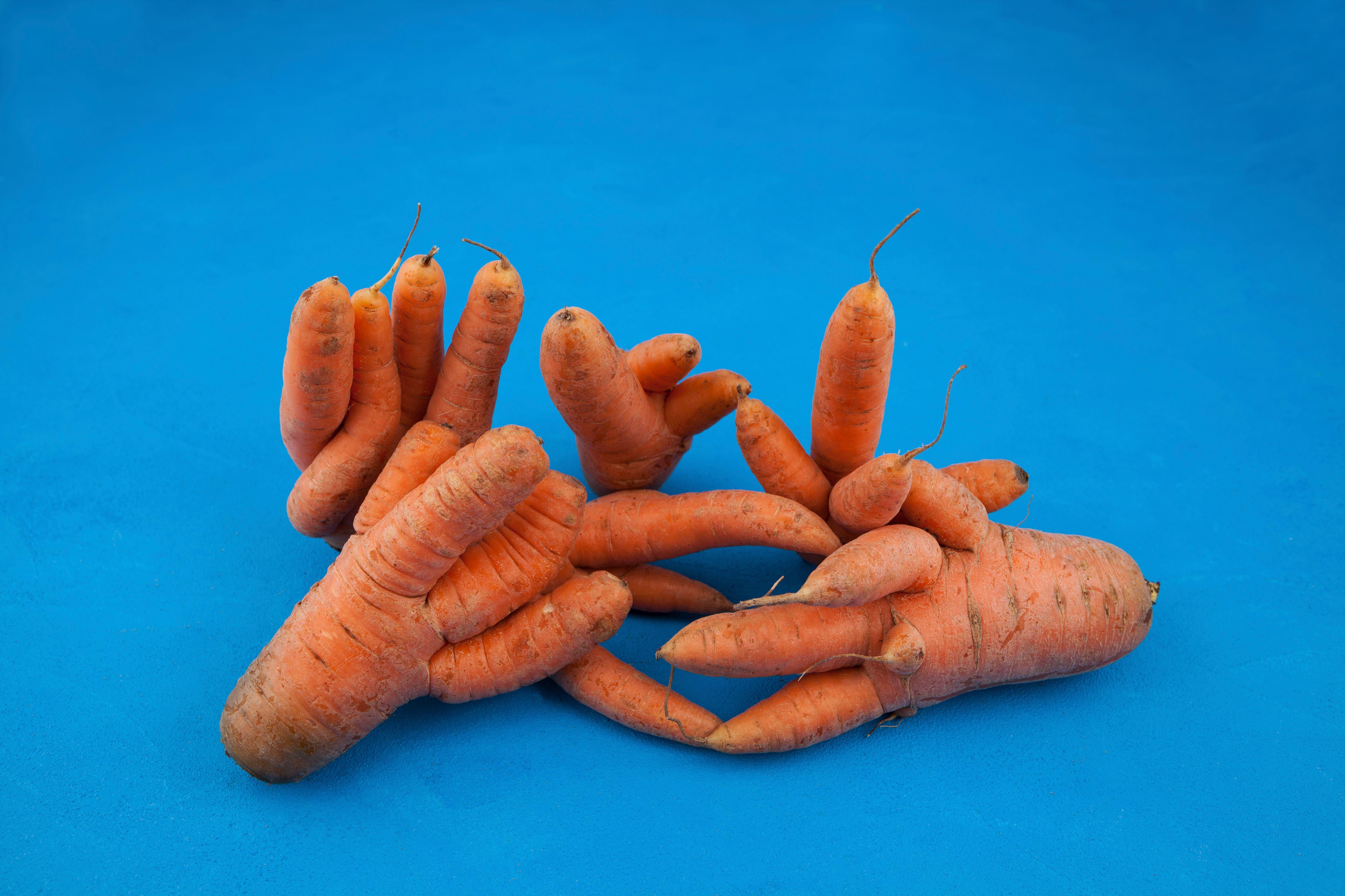 Krumme Karotten? Werden eher zu Säften verarbeitet.