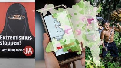 Burka, E-ID und Freihandelsabkommen: So hat Ihre Gemeinde abgestimmt