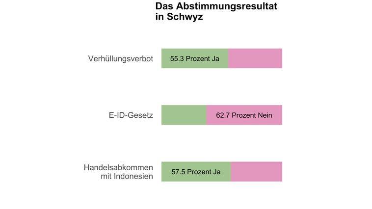 Schwyz sagt Ja zum Burkaverbot