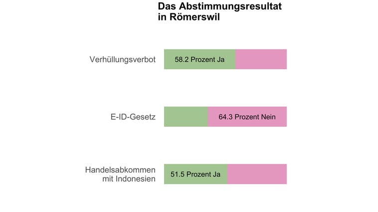 Römerswil sagt Ja zum Burkaverbot