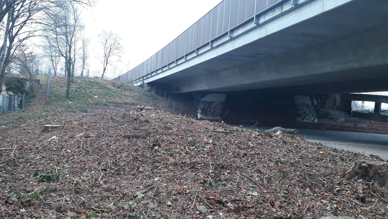 Grünen-Gemeinderat Andreas Wolf wollte auf dieser Fläche75 einheimische Sträucher pflanzen. (Archivbild: Sven Hoti)