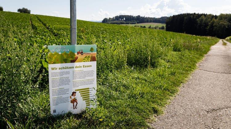 Bauernverbände machen gegen die Trinkwasser- und diePestizidinitiative mobil. Nicht zur Freude der Biobauern. (Hanspeter Bärtschi)