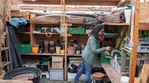 Die Gartenarbeit hat längst begonnen: Dolores im Gleisgartenbeim Neubad. (Bilder: Boris Bürgisser (Luzern, 9. März 2021))