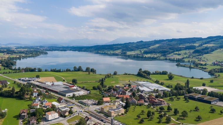 Weist die höchsten Phosphorwerteauf: derBaldeggersee, hier von Ermensee aus fotografiert. (Bild: Patrick Hürlimann (29. Juli 2020))