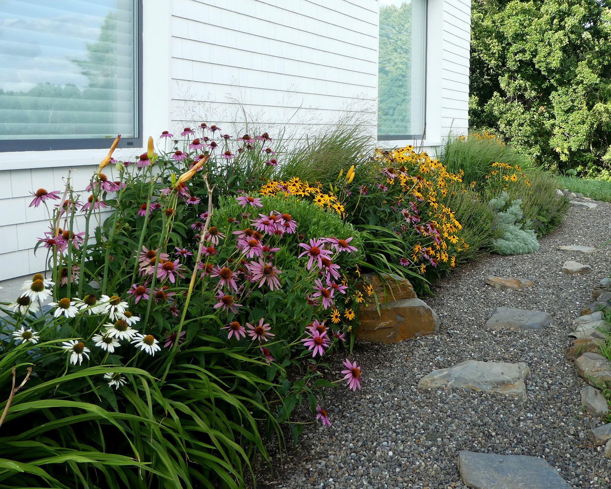 Vor dem Neubau im Hudson Valley: Die Auswahl der Pflanzen soll die Vielfalt der Insekten im New York State unterstützen.