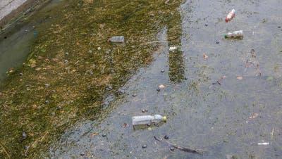 Plastikabfall im Bodensee in Lindau: Derzeit glücklicherweise noch kein grösseres Problem, und dabei soll es auch bleiben. (Bild: Five-Birds Photography / Alamy)