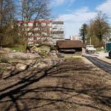 Rund um das Alterszentrum Obere Mühle in Villmergen wird ein Sinnespark gebaut. Die Arbeiten haben vor wenigen Wochen begonnen. (Britta Gut)