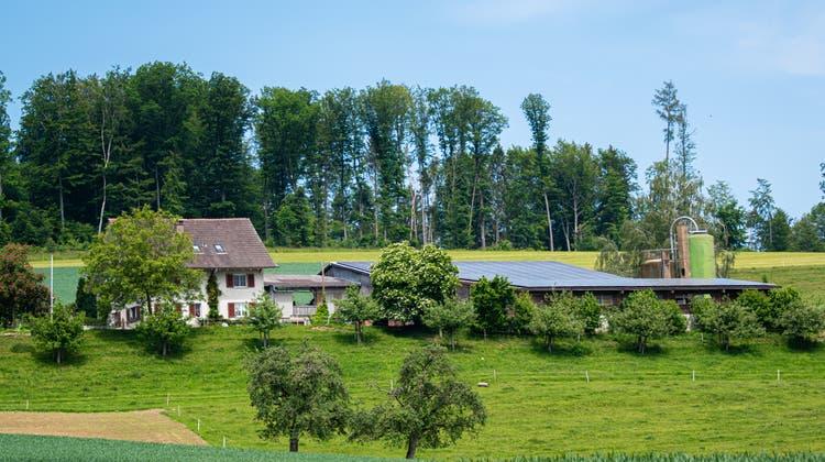 Der Waldhof von Markus Borner in Schneisingen (Foto: Markus Borner)