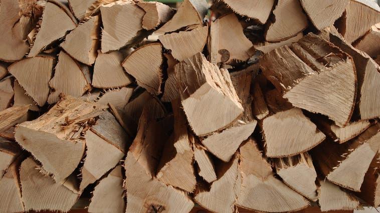 Mit dem CO2-Gesetz dürfte die Nachfrage nach Brennholz steigen. (Archivbild: Nana do Carmo)