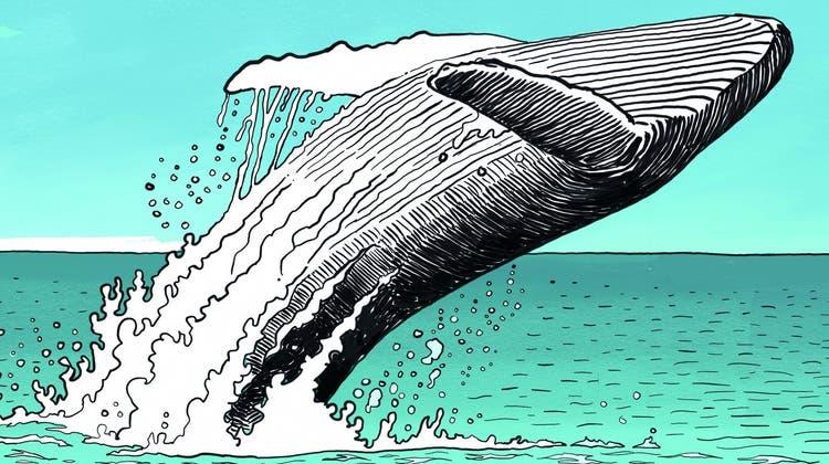 Von Corona gezeichnet: der Comic von Patrick Chappatte