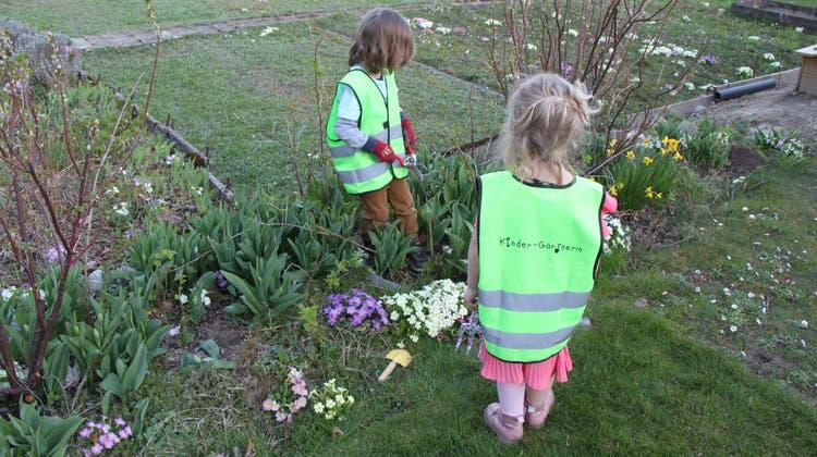 Die nächste Generation von Gärtnerinnen und Gärtnern kann in Dietikon ab Mittwoch nach Lust und Laune säen, pflanzen und ernten. (zvg)