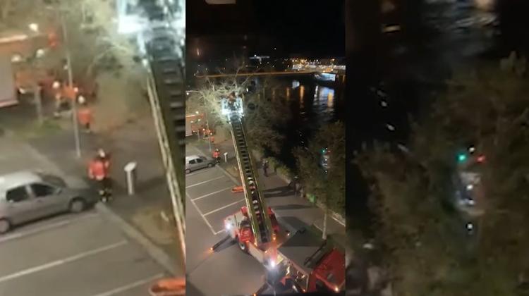 Rettungsaktion mitten in der Nacht: Frau stürzte in die Aare
