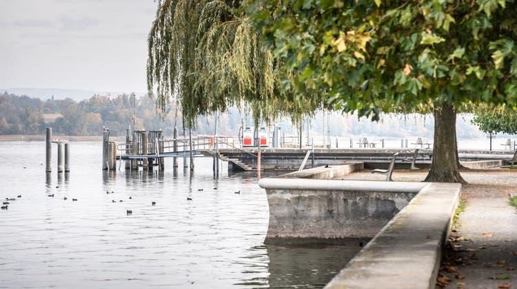 Der Uferbereich mit dem Landesteg im Hintergrund. (Bild: Andrea Stalder)