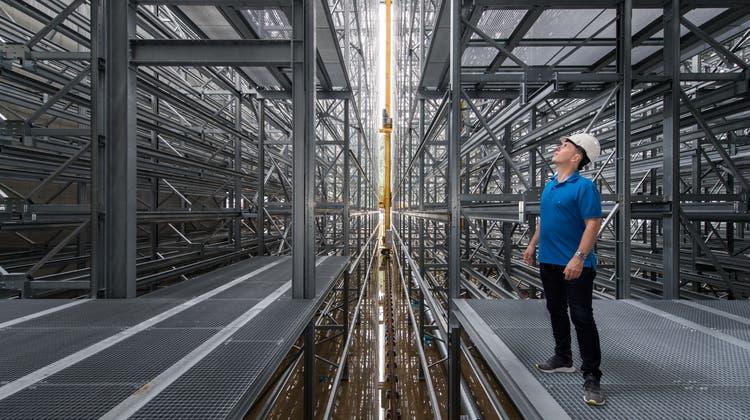 Firmeninhaber Roland Brack im Sommer 2020 auf der Baustelle desneuen Logistikzentrums in Willisau. (Bild: Eveline Beerkircher (2. Juli 2020))