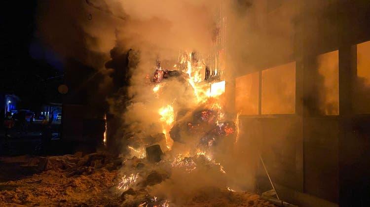 Die Polizei schliesst technische Ursache für den Brand im Pferdestall aus – und sucht weiterhin Zeugen