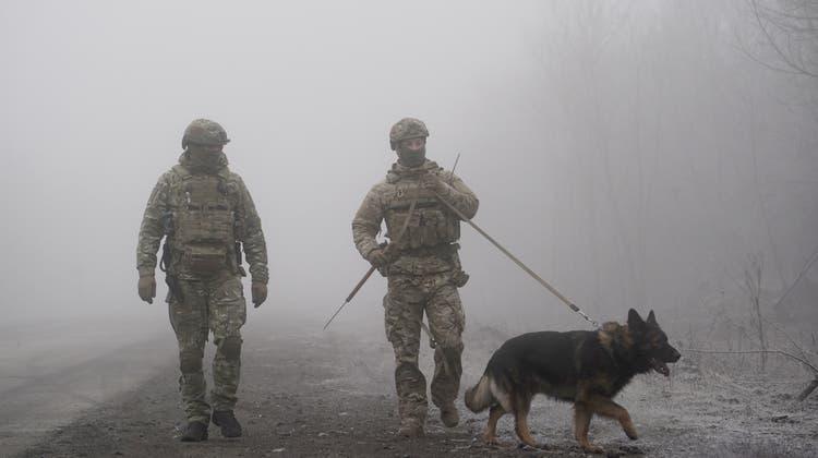 Ukrainische Soldaten schieben Wache an der Grenze zu Russland. (AP)