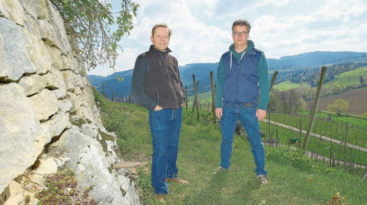 Winzer Antoine Kaufmann (r.) und Projektleiter Lukals Merkelbach stehen in der Klus vor einer Trockensteinmauer. (Kenneth Nars)