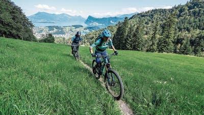 Faszination Velo: Die Zweiräder erleben einen Aufschwung
