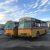 Die Saurer Busse aus den 70er-Jahrenbilden das Herzstück der geplanten Strandbar in Arbon am See. (Bild: PD)