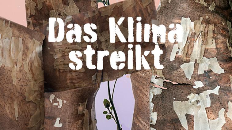 Bei der Ausstellung im Museum Bickel in Walenstadt stellen zehn Kunstschaffende Werke zum Thema Klimawandel aus. (Bild: Museum Bickel)