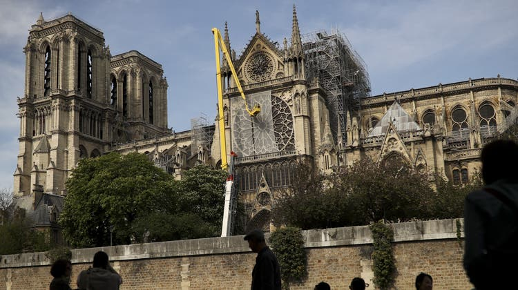 Für den Wiederaufbau der Pariser Notre-Dame Kathedrale werden 2'000 Eichen gefällt. (Francisco Seco / AP)