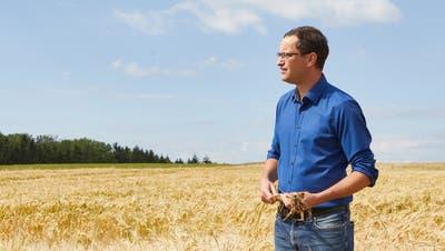 Christoph Hagenbuch im letzten Sommer in seinem Gerstenfeld in Oberlunkhofen. Die Gerste wird angebaut für die Drüüklang Brauerei in Oberlunkhofen. (Henry Muchenberger)