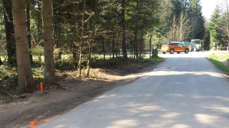 Im Kölliker Wald sollen bei der Verzweigung Schönenwerderstrasse/Toscaniweg sieben Parkplätze entstehen. (Flurina Dünki / Aargauer Zeitung)