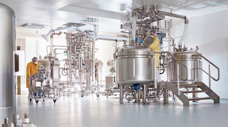 Die Pharmaproduktion von Roche in Penzberg, rund 50 Kilometer von München entfernt. (Bild: Jan Greune)