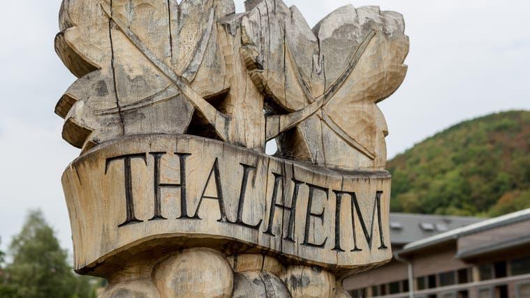 Vogelnest-Schaukel in Thalheim mutwillig zerschnitten ++ Auf eine Ersatzwahl wird verzichtet in Birr