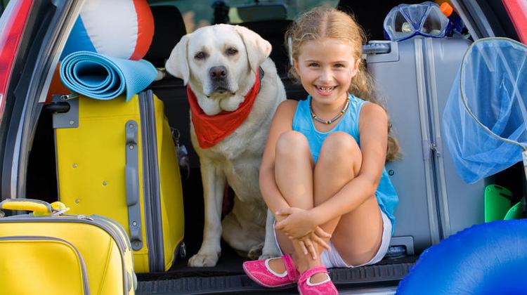 Mit dem Hund zu verreisen ist nicht immer leicht. Vor allem wenn es darum geht, ein passendes Hotel zu finden. (Bild: Fotolia)
