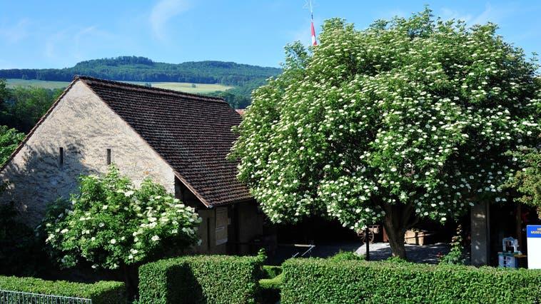 Das Heimatmuseum von Schinznach-Dorf befindet sich an der Oberdorfstrasse 13 hinter dem Gemeindehaus. (zvg)