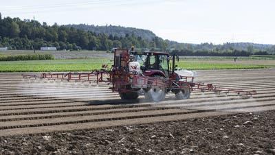 Pestizide schaden nicht nur den Tieren und der Natur, sondern landen auch in Lebensmitteln und in der Grund-/Trinkwasserversorgung. (Keystone)