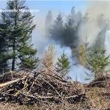 Waldbrand in Brunegg fordert dreistündigen Feuerwehreinsatz
