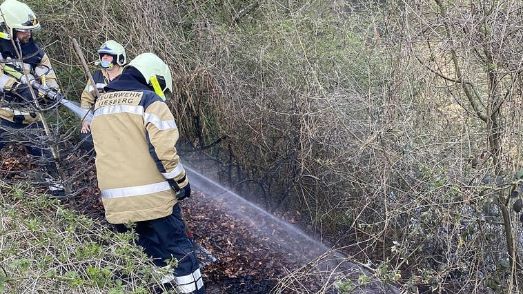 Beim Brand in Liesberg wurde ein Stück bewachsene Böschung in Mitleidenschaft gezogen. (Polizei Basel-Landschaft)