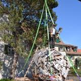 Künstler Christoph Rütimann dankt auf seiner «Einigelung» stehend für das Gastrecht auf dem Areal von Heini Buff. (Bilder: Margrith Pfister-Kübler)