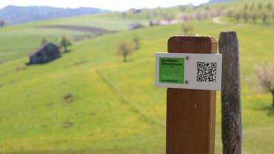 Grüne Wegweiser und QR-Codes führen die Besucherinnen und Besucher informativ über die Wanderwege. (Eva Oberli)