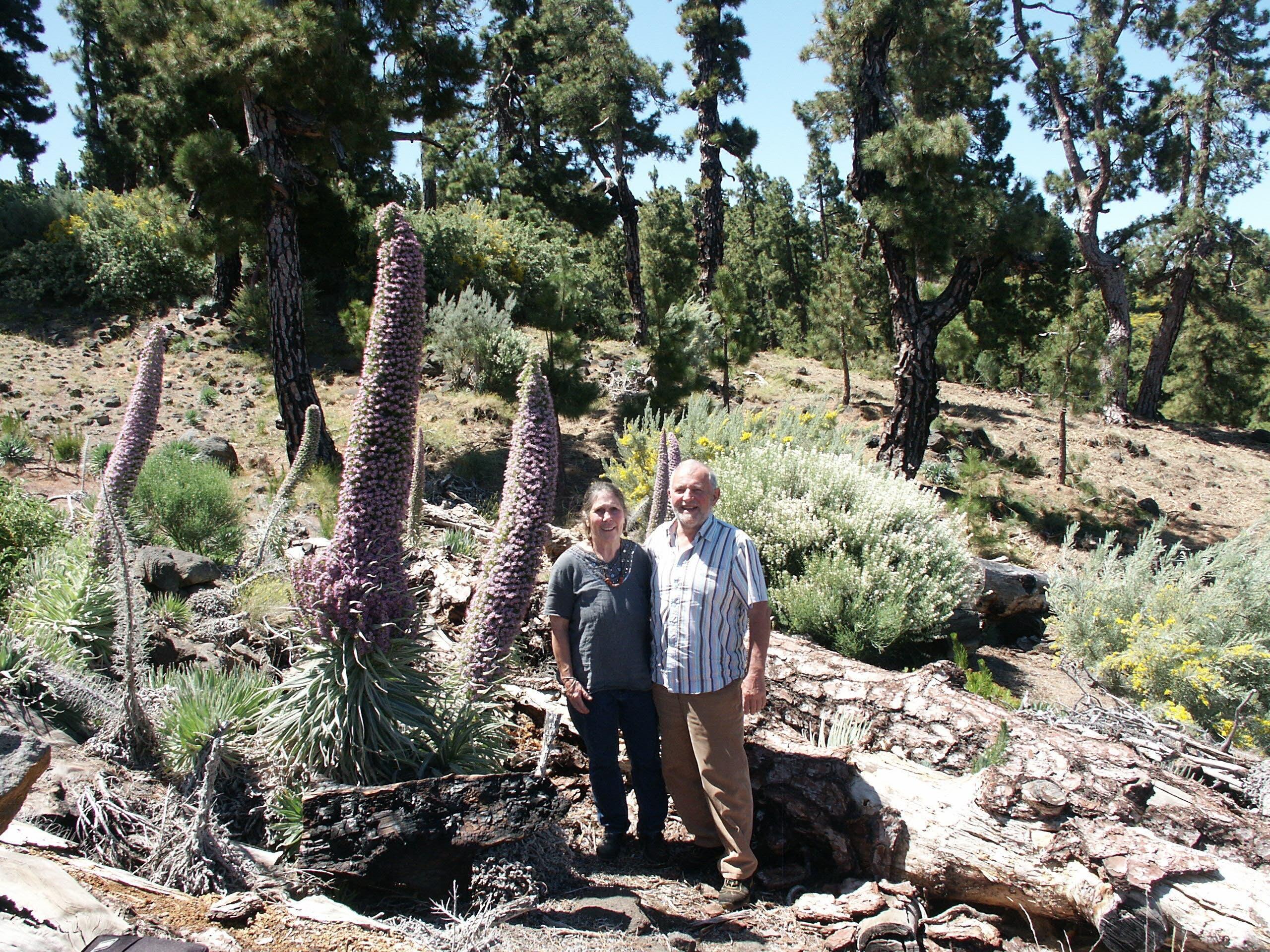 Herbert und Genoveva Eppelsheimer sind 1990 mit ihren drei Söhnen Yves, Remo und Mario von Birmensdorf nach La Palma ausgewandert.