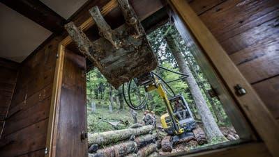Diese illegal gebaute Hütte im Krienser Hochwald wurde vom Zivilschutz abgerissen. Die Hütte war zuletzt im Besitz der Gemeinde Kriens. (Bild: Pius Amrein (17. Mai 2016))